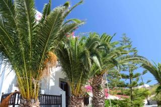 garden-patmos-hotel