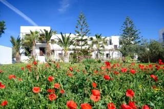 patmos-hotel-asteri-garden
