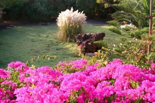 patmos-hotel-garden-02